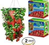 Topsy Turvy STRAWBERRY HANGING PLANTER Upside Down Grow Bag No Seeds
