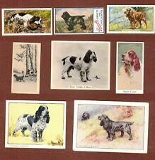 English Cocker Spaniel dog vintage cigarette trade cards set of 8
