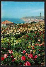 AD0270 Imperia - Provincia - Sanremo - Panorama - Campo di fiori