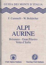 Alpi Aurine: Brennero Gran Pilastro Vetta d'Italia. Guida dei monti d'Italia