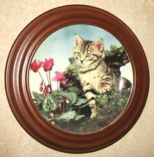 Collectible Cat Plate Princeton Gallery Pure Personality