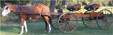 Horse drawn buckboard wagon Miller & Yoder Amish made great condition