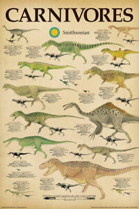 DINOSAURS CHART - CARNIVORES POSTER 24x36 - 241468