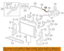 GM OEM Radiator-Overflow Hose 22962116