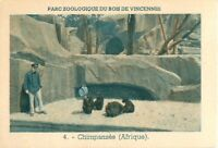 Chimpanzés Chimpanzees Chimp Pan Parc Zoologique de Vincennes Zoo IMAGE OLD CARD