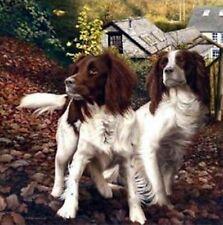 More details for nigel hemming autumn watch springer spaniel dog lover