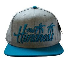 The Hundreds Palms Snapback Hat Heather and Teal