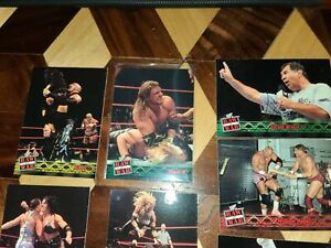 WWF/WWE Raw Is War 2001 Fleer Trading Cards Autographs LOT OF 8 🔥🔥🔥🔥