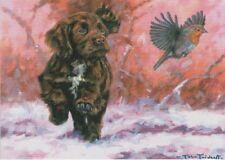Cocker Spaniel Robin Dog Cute Puppy Painting Christmas Xmas Card