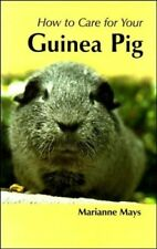 How To Care For Your Guinea Pig - New Book Mays, Marianne