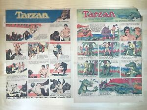 Tarzan Sunday Pages, 1933 Full Year, Hal Foster Art, Full Colour Pages