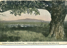 CONTOOCOOK LAKE AND MONADNOCK MT., EAST JAFFREY, N.H. OLD OAK TREE.