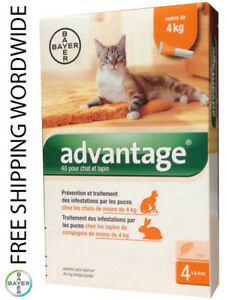 Pack 4 Advantage 40 small Cat under 9lb < 4kg under 4kg - 9lb - ADVANTAGE