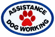 "ASSISTANCE DOG WORKING Sew-On SD-006 Embroidered Patch 3"" x 2"" FREE SHIPPING!"