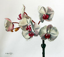 White Orchid 3, Flower, Garden, Original Watercolor Painting, Signed, Art Deco