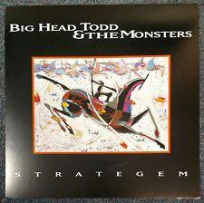 Big Head Todd & The Monsters Stratagem 1994 CARDBOARD PROMO POSTER FLAT
