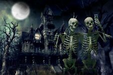 HALLOWEEN HAUNTED HOUSE SKELETONS SELFIES CELL PHONE MOON CANVAS ART PRINT BIG