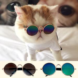 Cool Pet Cat Sunglasses Funny Glasses Photograph Tool Kitty Kitten Decor Toys