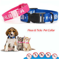 Pet Dogs Cats Anti Insect Flea Tick Mosquitoes Collar for 4 month UK