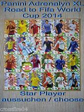 Panini Adrenalyn Road to World Cup 2014 Brazil Star Player escoger/choose