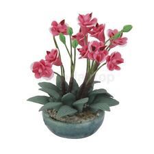 1:12 Puppenstube Miniatur Clay Orchidee   Pflanze Pflanzedekoration