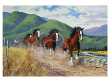 Follow the Leader greeting card of horses trailing each other by Peter Hill