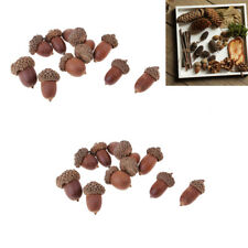 20x Mini Real Natural Dried Flowers Acorns Accents Home Decoration Ornaments