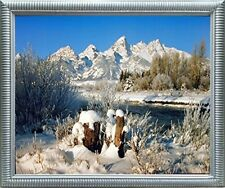 Grand Teton Covered with Snow Under Willow Tree Scenery Wall Art Framed Picture
