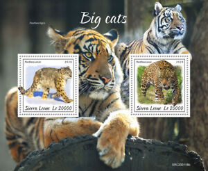 Sierra Leone Wild Animals Stamps 2020 MNH Big Cats Tigers Jaguars Leopards 2v SS