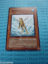 Treeborn Frog GLD2-EN010 Common Yu-gi-oh Card Mint Limited Edition New