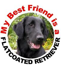 2 Flatcoated Retriever Car Stickers By Starprint