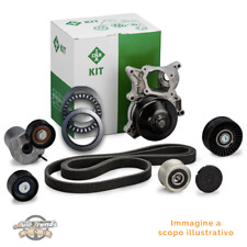 1 INA 534018010 Tendicinghia, Cinghia Poly-V BERLINGO BERLINGO Furgonato C3 I