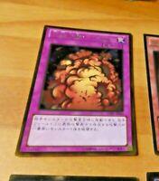 YUGIOH JAPANESE GOLD RARE CARD CARTE Widespread Ruin GDB1-JP060 OCG TCG JAP MINT