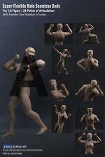 1/6 TBLeaglue Phicen Flexible Male Seamless Muscular Body w/Steel Skeleton M30