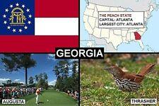SOUVENIR FRIDGE MAGNET of THE STATE OF GEORGIA USA