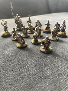 Human Noble Team Pro Painted