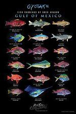 "Wall art Poster 24""x36"" Realfish Gyotaku Series "" Fish of the Gulf of Mexico """