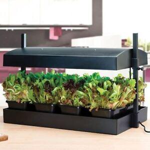 Garland Grow Light Propagation Lighting System in Black