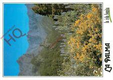 Postcard__Canary Islands, La Palma, Caldera De Taburiente Tajinaste Y Gacia
