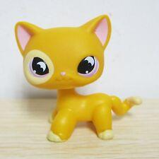 Littlest Pet Shop #855 Orange Yellow SHORT HAIR CAT Purple Moon Eyes Bat Eyes B1