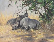 Wilhelm Kuhnert Two Rhinoceros Resting Print 11 x 14   #6194