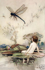 Vintage Print-Reproduction-11x17 inches-Water Baby&Dragonfly/Dragon Fly/Gobel