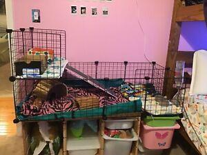 Tespo CB06PA Metal Indoor Small Animal Cage Fence - 12 Panels