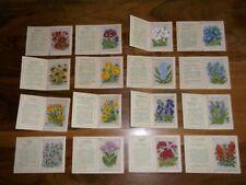 More details for kensitas silk flowers 2nd series x 16 ( large ) ( v good  ) 1935
