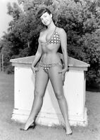 Vintage Bettie Page Photo 652 Oddleys Strange & Bizarre 4 x 6