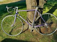Rare Purple Bianhci Tour Bike