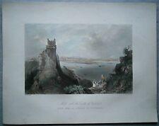 1842 Bartlett print MELK & CASTLE OF WEITENEGG, DANUBE, AUSTRIA (#37)