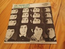 The Tremeloes 45 record - Silence Is Golden , Epic 1967 picture sleeve