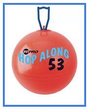 Champion Sport PP53 FitPro Hop Along Pon Pon Ball 53cm Red