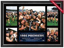 1995 AFL Premiers Carlton AFL L/E Official Premiergraph Framed Koutoufides